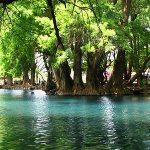 El Lago de Camécuaro