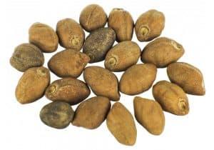 Los granos de ololiuhqui